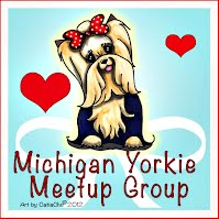 Michigan Yorkie Small Dog Meetup Group