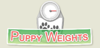 yorkie weight chart, weight, yorkie weight, yorkshire weight, puppy weight, Yorkie Growth Chart How Big Do Yorkies Get, growth chart, yorkie growth chart, yorkie weight chart, yorkie growth, yorkie weight, yorkie size, puppy weights, yorkshire puppy weights, yorkie size and weight, yorkie weight chart, yorkie growth stages, yorkie sizes, yorkies sizes, teacup yorkie weight, teacup yorkie weight chart